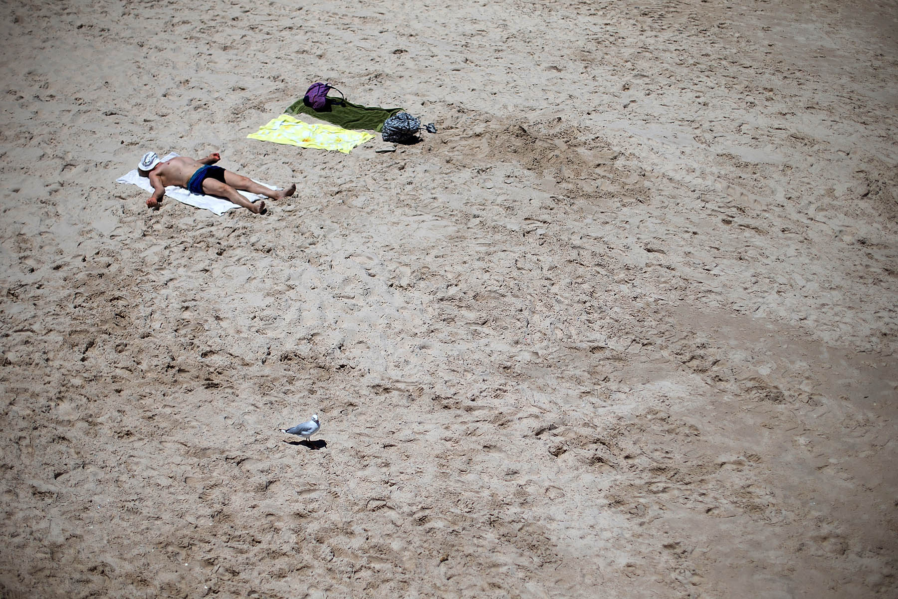 A man sunabathes in the midday sun during a heat wave at Glenelg beach on Jan. 13, 2014 in Adelaide, Australia.