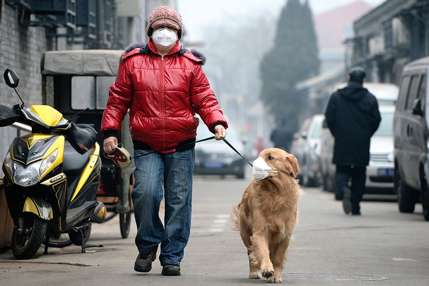 A man and his dog, both wearing masks, walk along a small alley on a hazy day in Beijing on Feb. 23, 2014