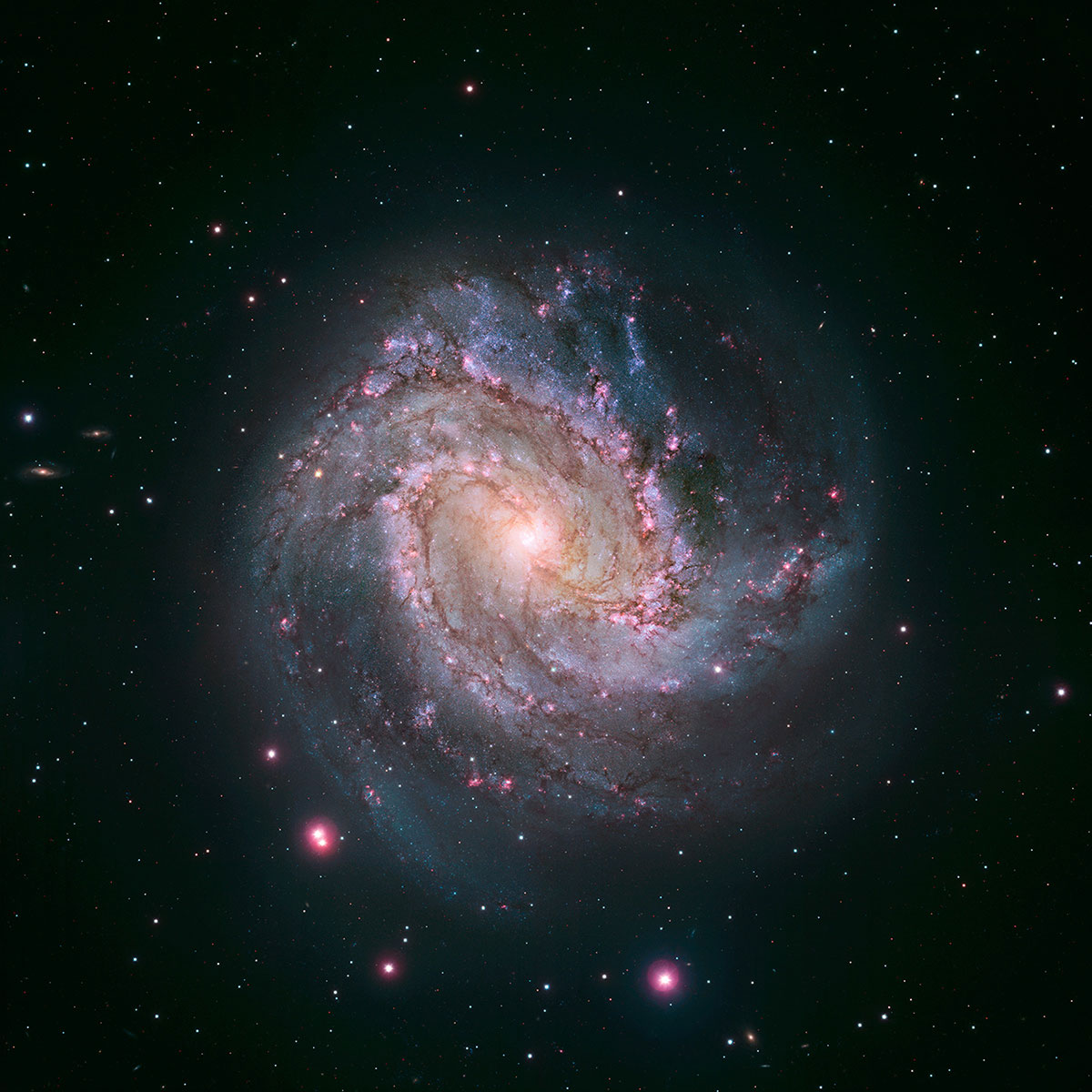 The barred spiral galaxy M83, also known as the Southern Pinwheel, is seen in a NASA Hubble Space Telescope mosaic released Jan. 9, 2014. The Hubble photograph captures thousands of star clusters, hundreds of thousands of individual stars, and  ghosts  of dead stars called supernova remnants.