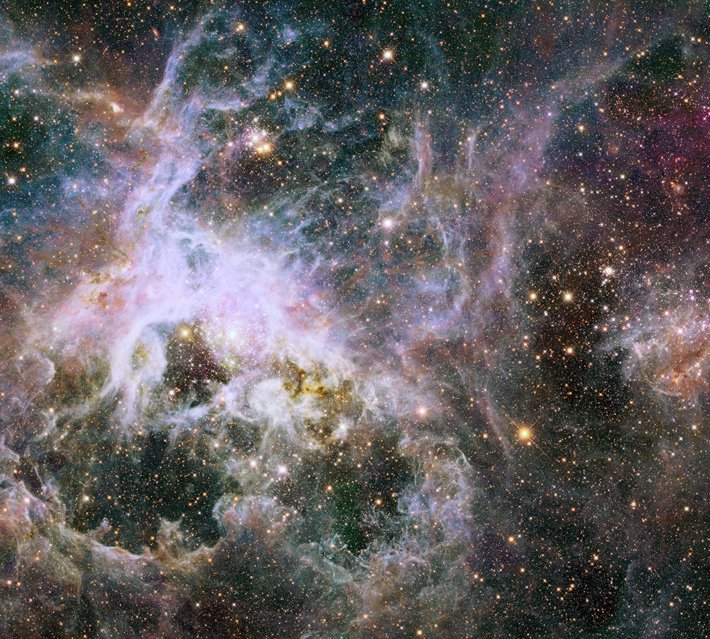 This new Hubble image shows the Tarantula Nebula in infrared light. This region is full of star clusters, glowing gas, and thick dust. The Hubble Tarantula Treasury Project (HTTP) is scanning and imaging many of the many millions of stars within the nebula, mapping out the locations and properties of the its inhabitants. These observations will help astronomers to piece together an understanding of the nebula's skeleton by viewing its starry structure—a bit like discerning the branches of a Christmas tree by looking at the placement of the lights.