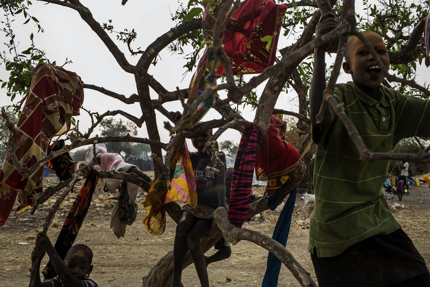 Feb. 7, 2014. Children play in a tree in the temporary camp of South Sudanese Internally Displaced People (IDP's) in Mingkaman, South Sudan.