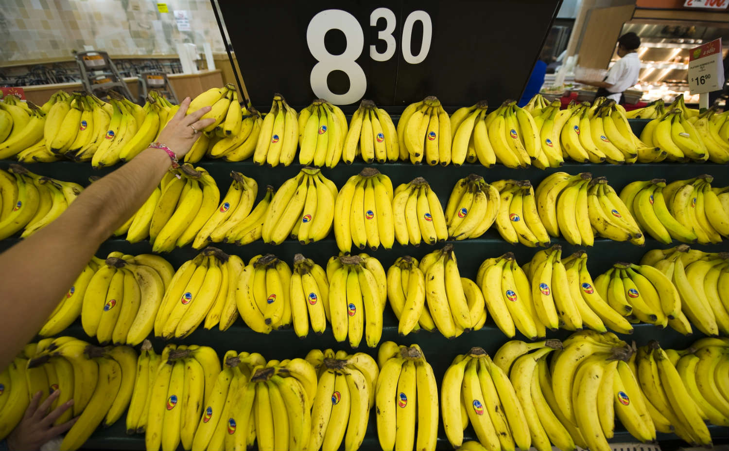 Bananas are increasingly popular around the world, but they're vulnerable to a new disease