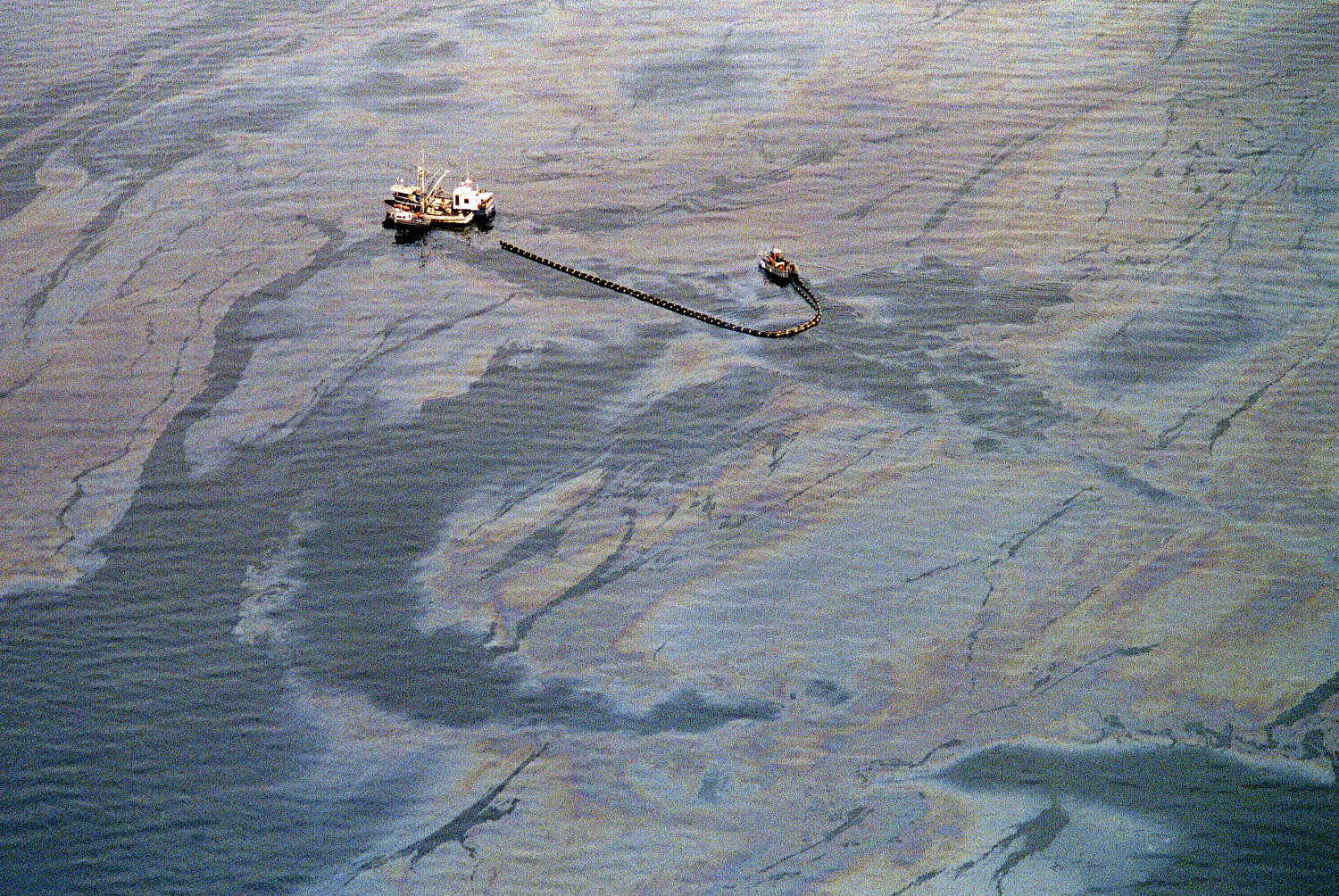 Nearly 11 million gallons of oil spilled into Prince William Sound after the 1989 Exxon Valdez spill