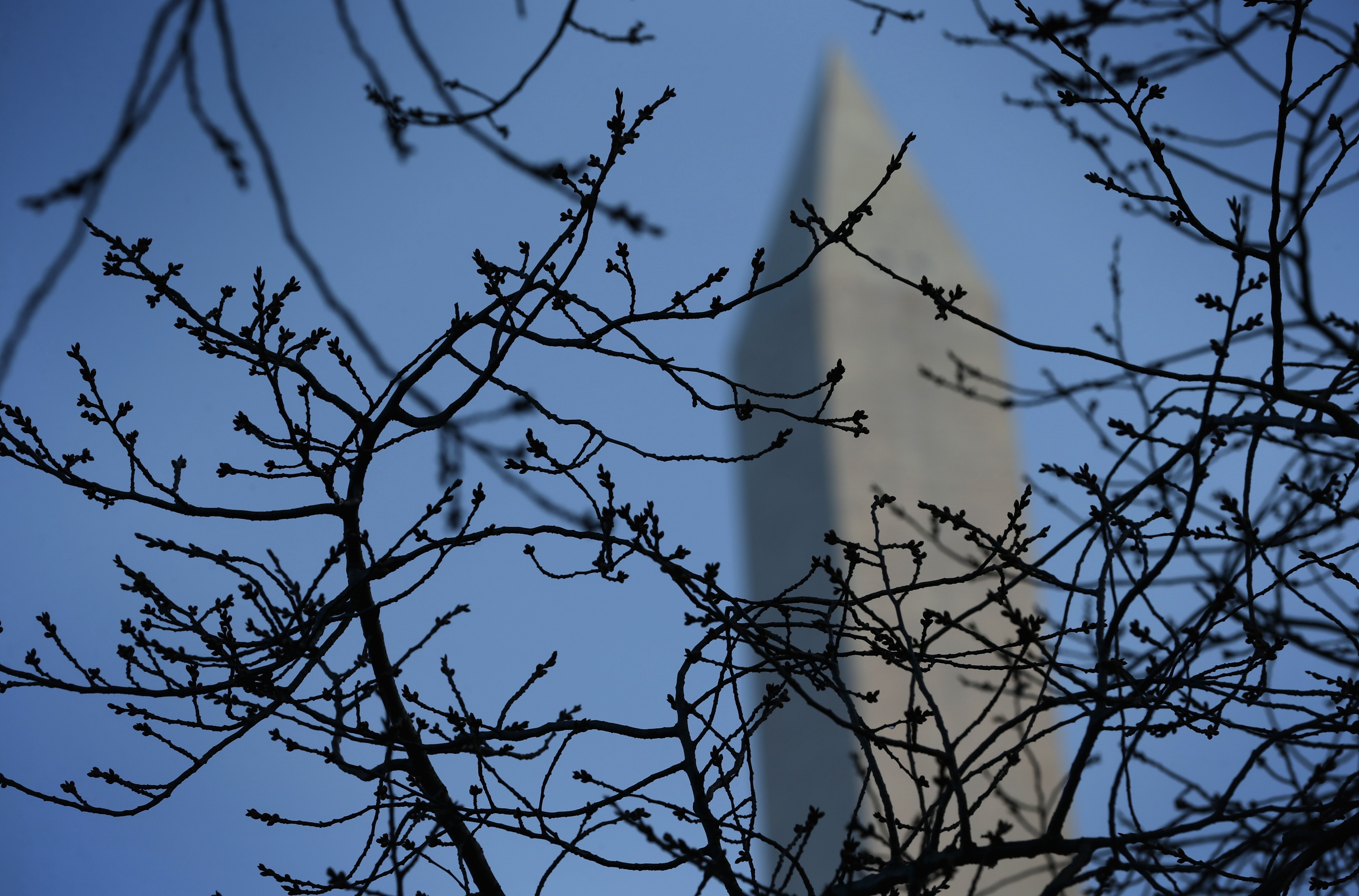 The Washington Monument, glimpsed on March 20—the first day of spring