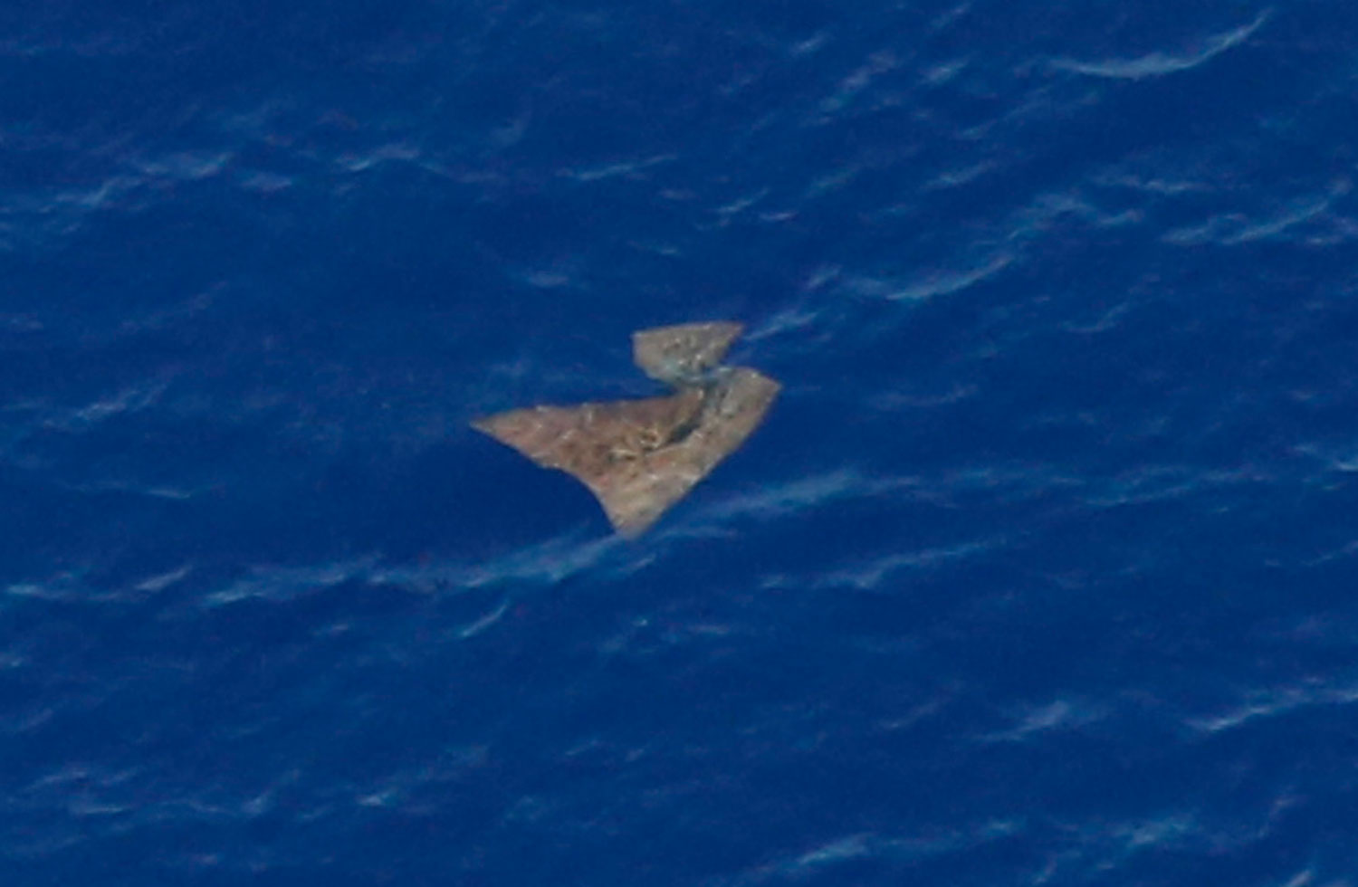 An object floats in the southern Indian Ocean in this picture taken from a Royal New Zealand Air Force P-3K2 Orion aircraft searching for missing Malaysian Airlines flight MH370, March 29, 2014.