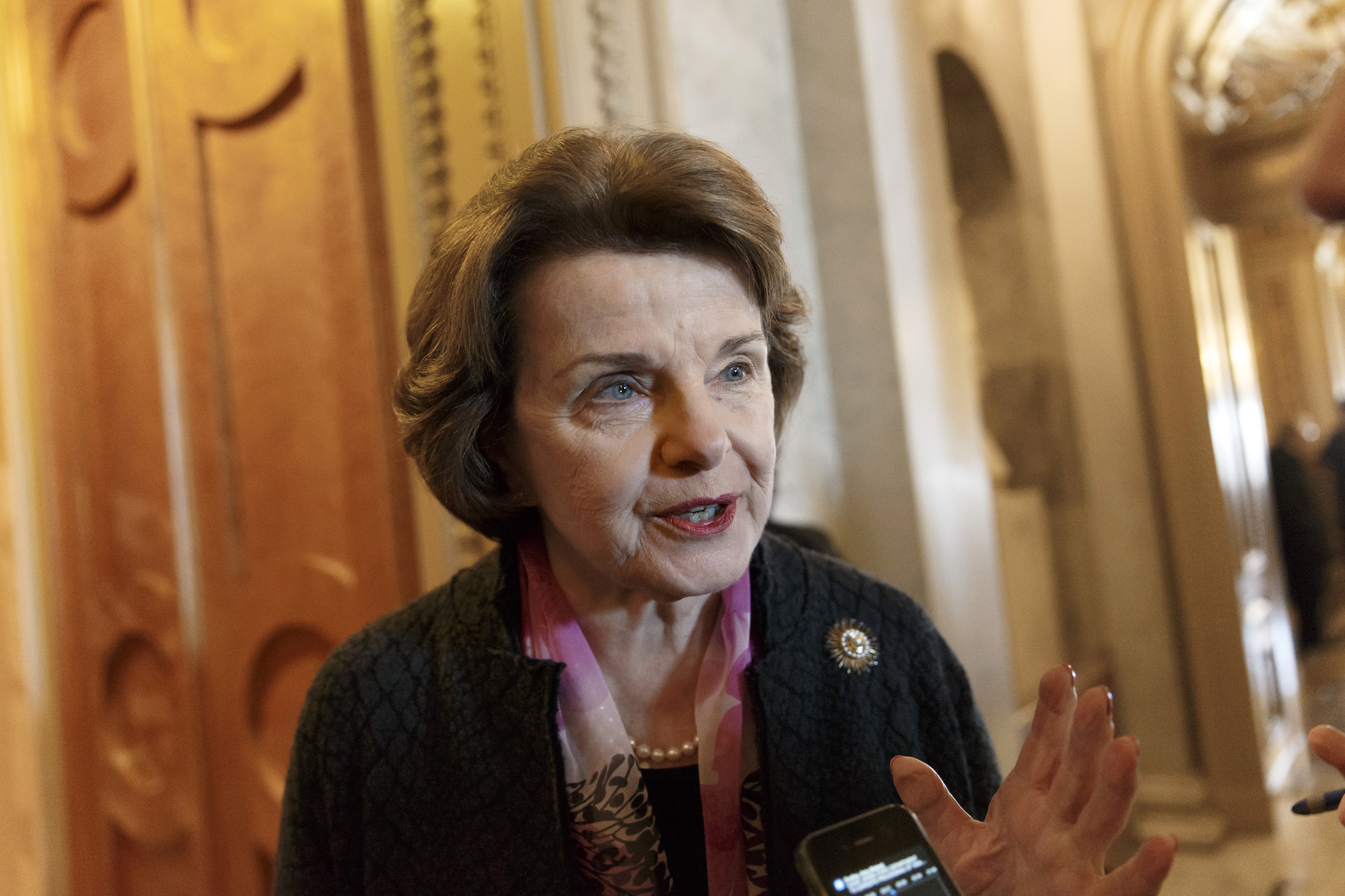 Senate Intelligence Committee chairwoman Dianne Feinstein arrives at the Senate chamber on Capitol Hill on March 27, 2014