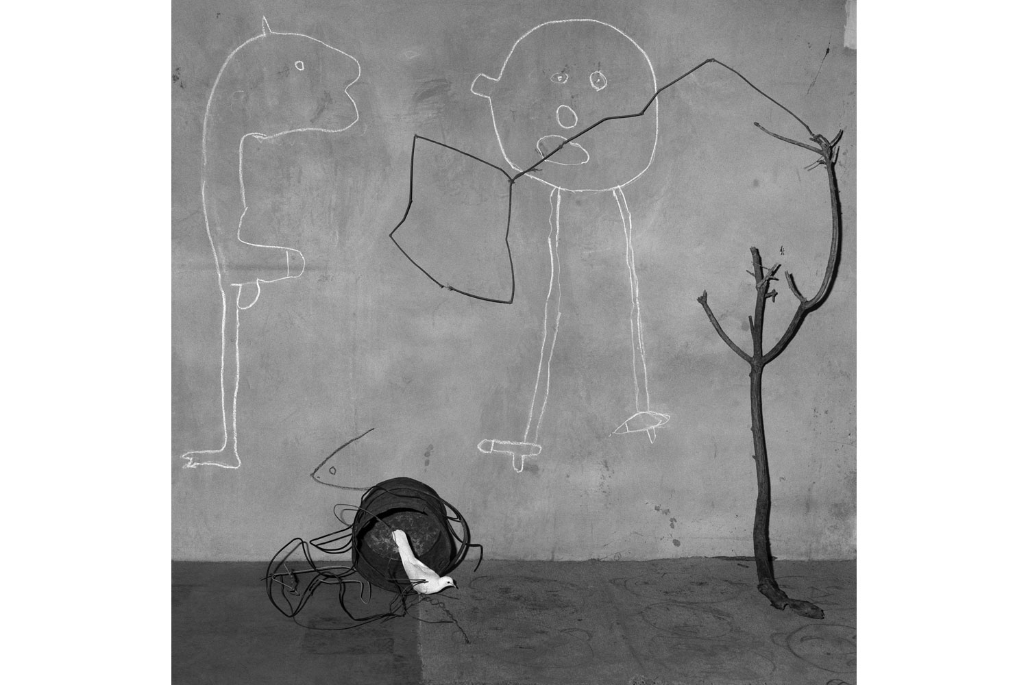 'Beware,' from Roger Ballen's Asylum of the Birds, published by Thames & Hudson