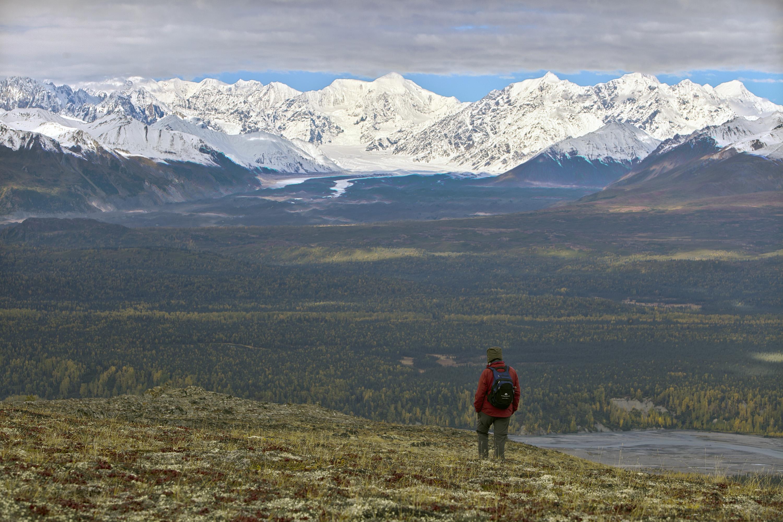 Little Coal Creek Trail, Denali State Park, Alaska, United States of America.