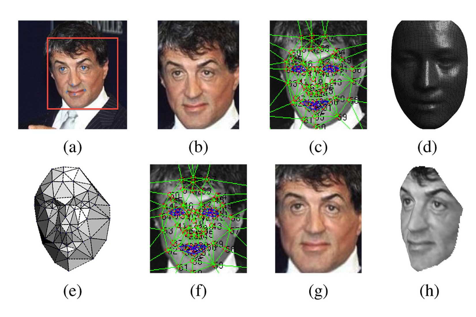 In a paper on DeepFace, the developers show an example of the application at work to recognize the actor Sylvester Stallone.