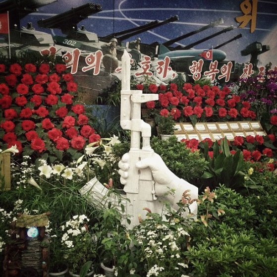 "Display at the ""Kimjongilia"" and ""Kimilsungia"" flower exhibition in Pyongyang, North Korea, July 24, 2013."