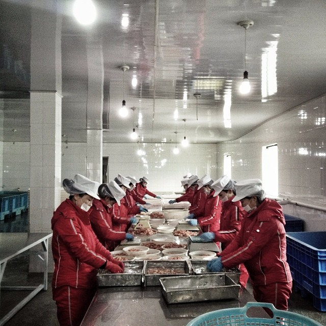North Korean workers sort seafood at a factory in Rajin, December 3, 2013.