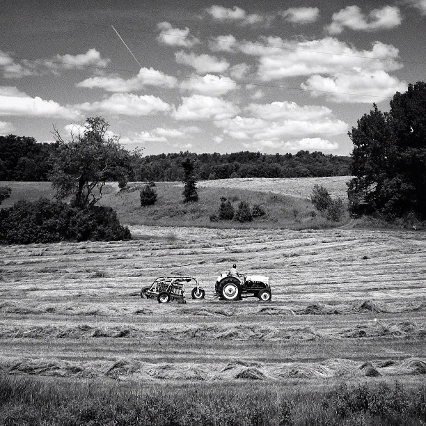 Near Gleason, Wisconsin, July 2, 2013.
