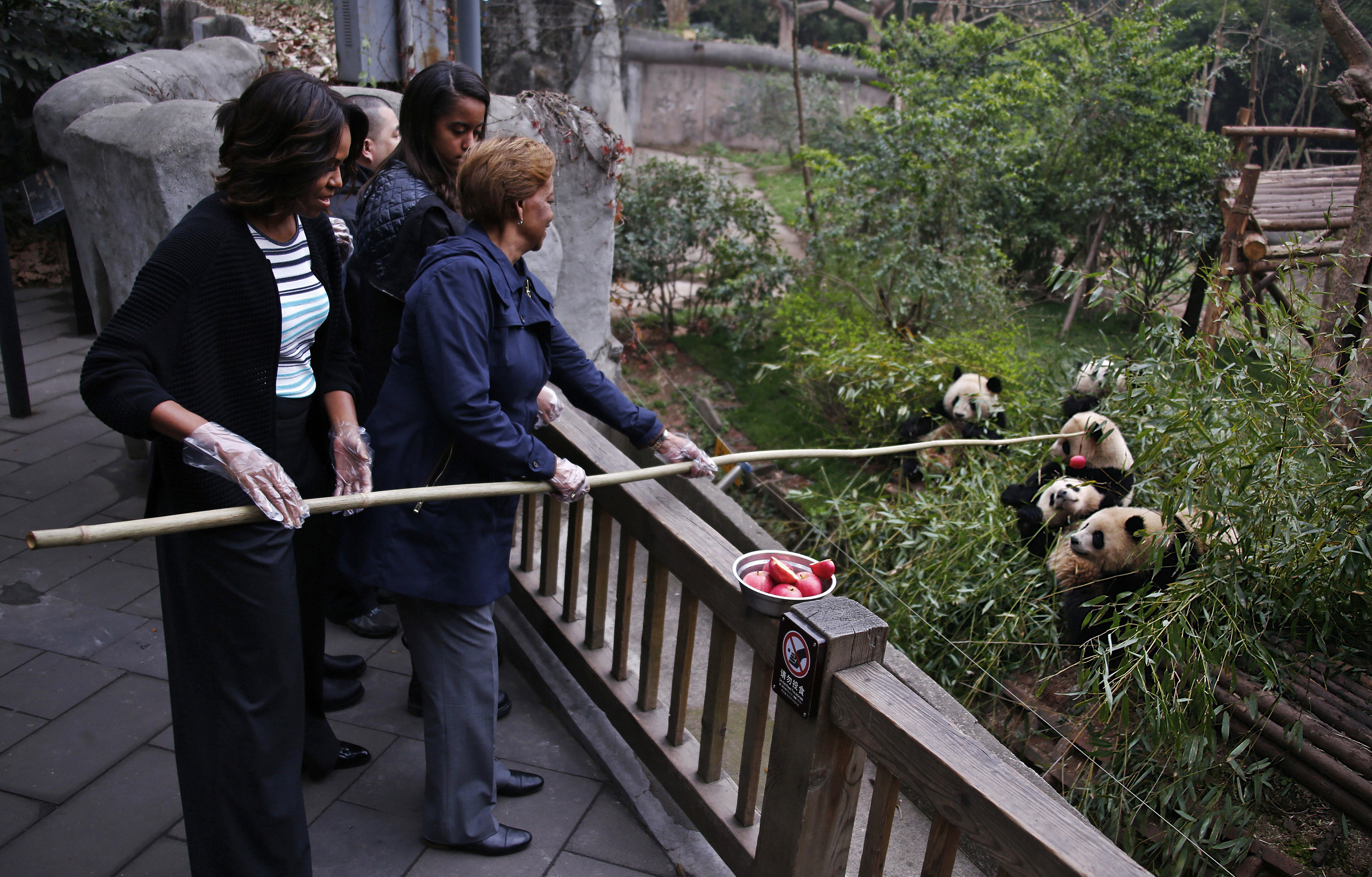 U.S. first lady Michelle Obama (L) and her mother Marian Robinson (R) feed apple to giant pandas as daughter Malia looks on during their visit at Giant Panda Research Base in Chengdu, Sichuan province, March 26, 2014.