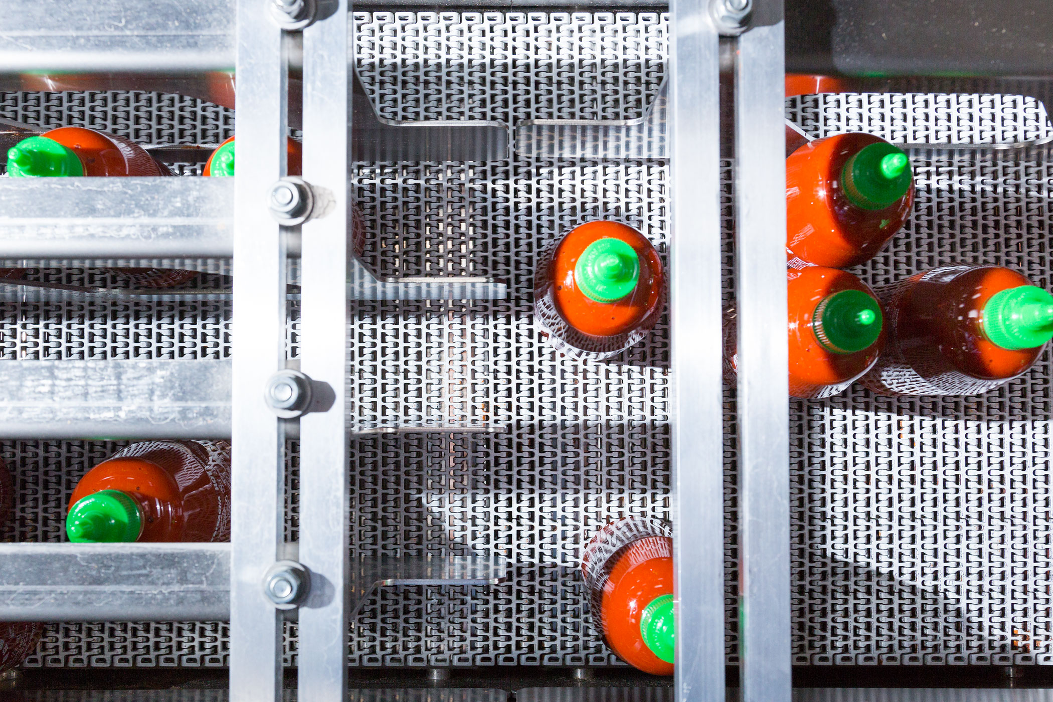 Filled and capped bottles of Sriracha move along an assembly line on their way to be boxed and shipped.