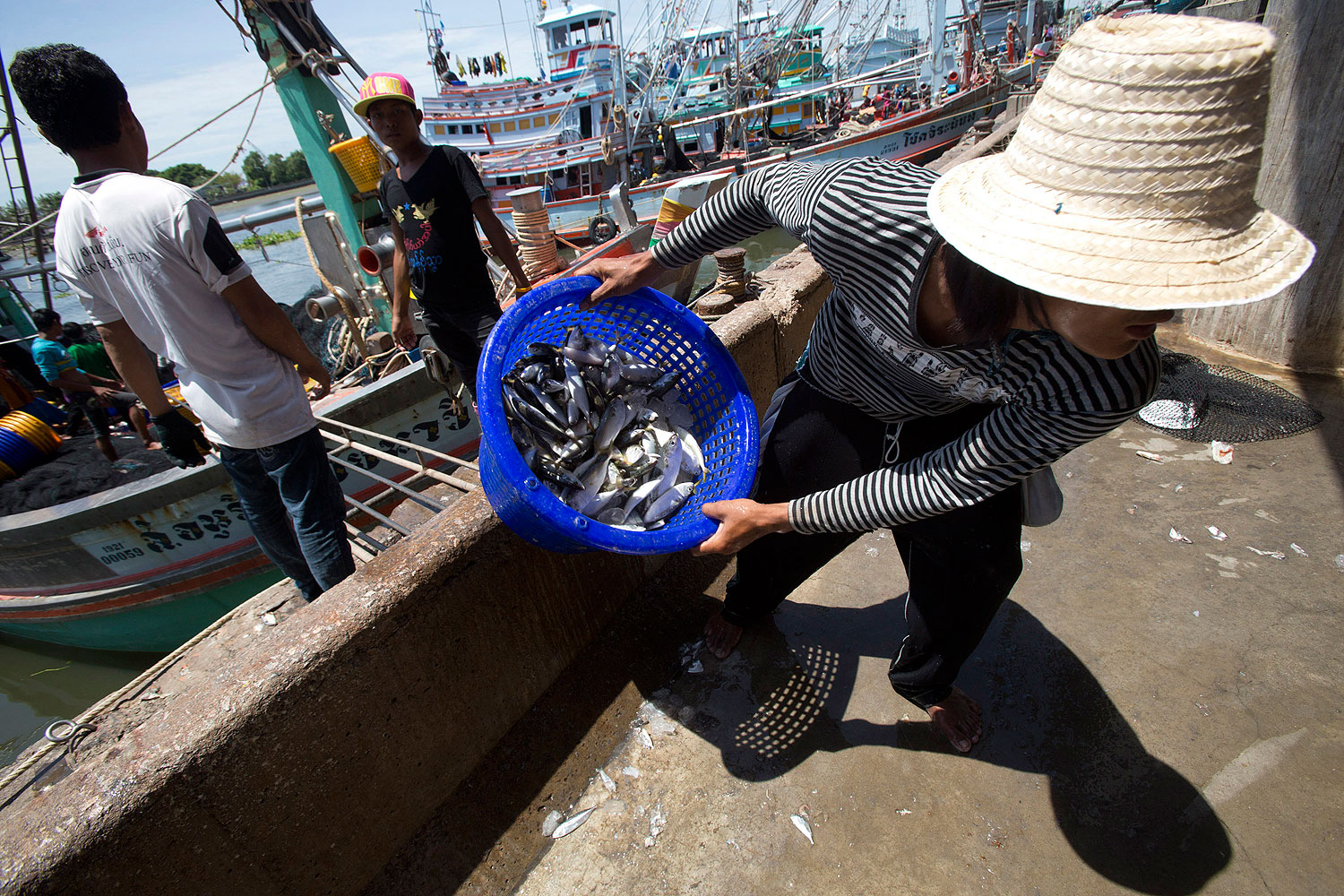 Workers from Burma land fish after a trip to the Gulf of Thailand