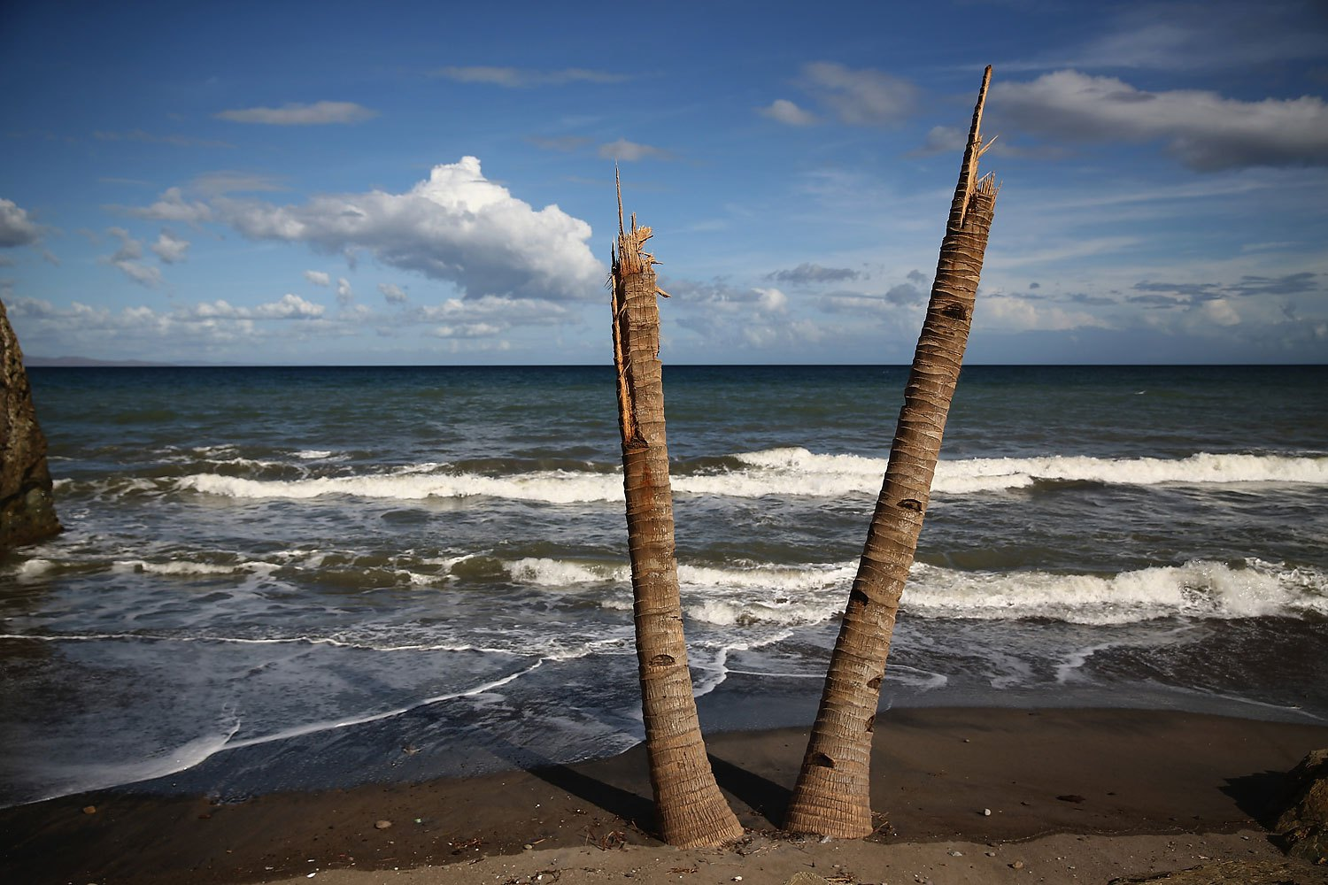 Two broken palm trees stand snapped in half on the beach near Tanauan, on November 19, 2013 in Leyte, Philippines.