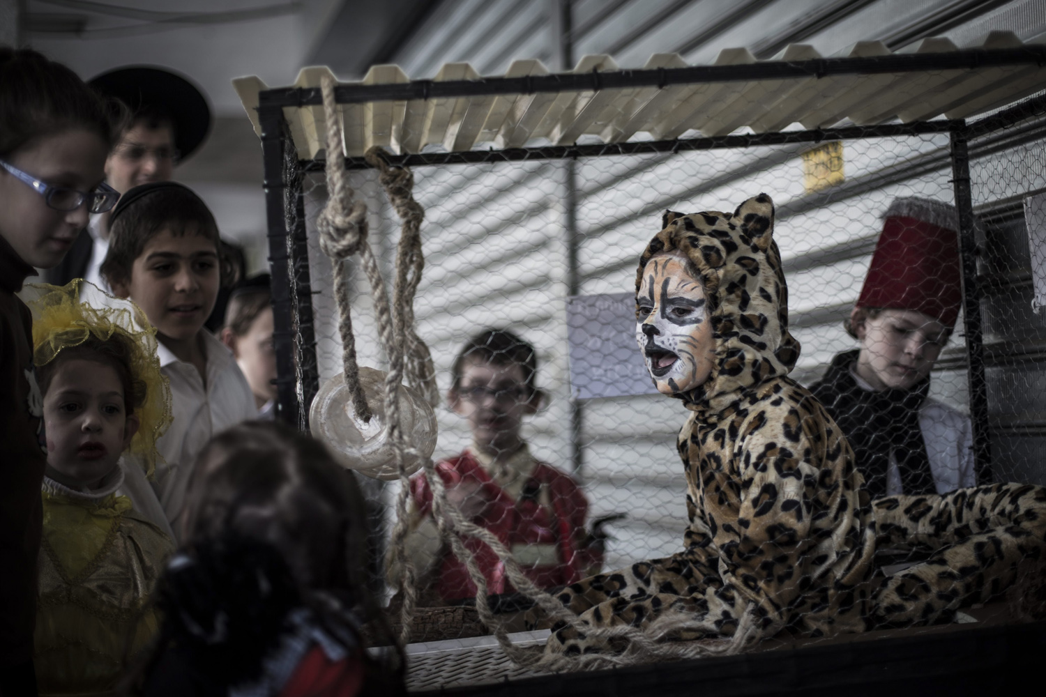 Mar. 16 , 2014. Ultra Orthodox Jewish children look at a girl costumed as a leopard in a cage for Purim on a street in Bnei Brak, outside Tel Aviv, Israel.