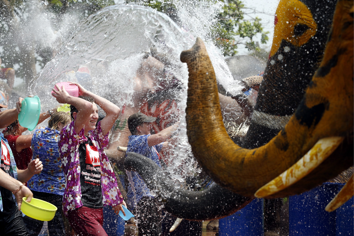 Apr. 9, 2014. Foreigners get sprayed with water from elephants to preview the upcoming Songkran Festival celebration, the Thai traditional New Year, also known as the water festival at the ancient world heritage city of Ayutthaya, Thailand.