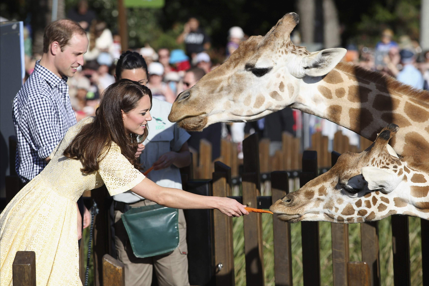 Prince William and Catherine, Duchess of Cambridge, feed giraffes at Sydney's Taronga Zoo April 20, 2014.