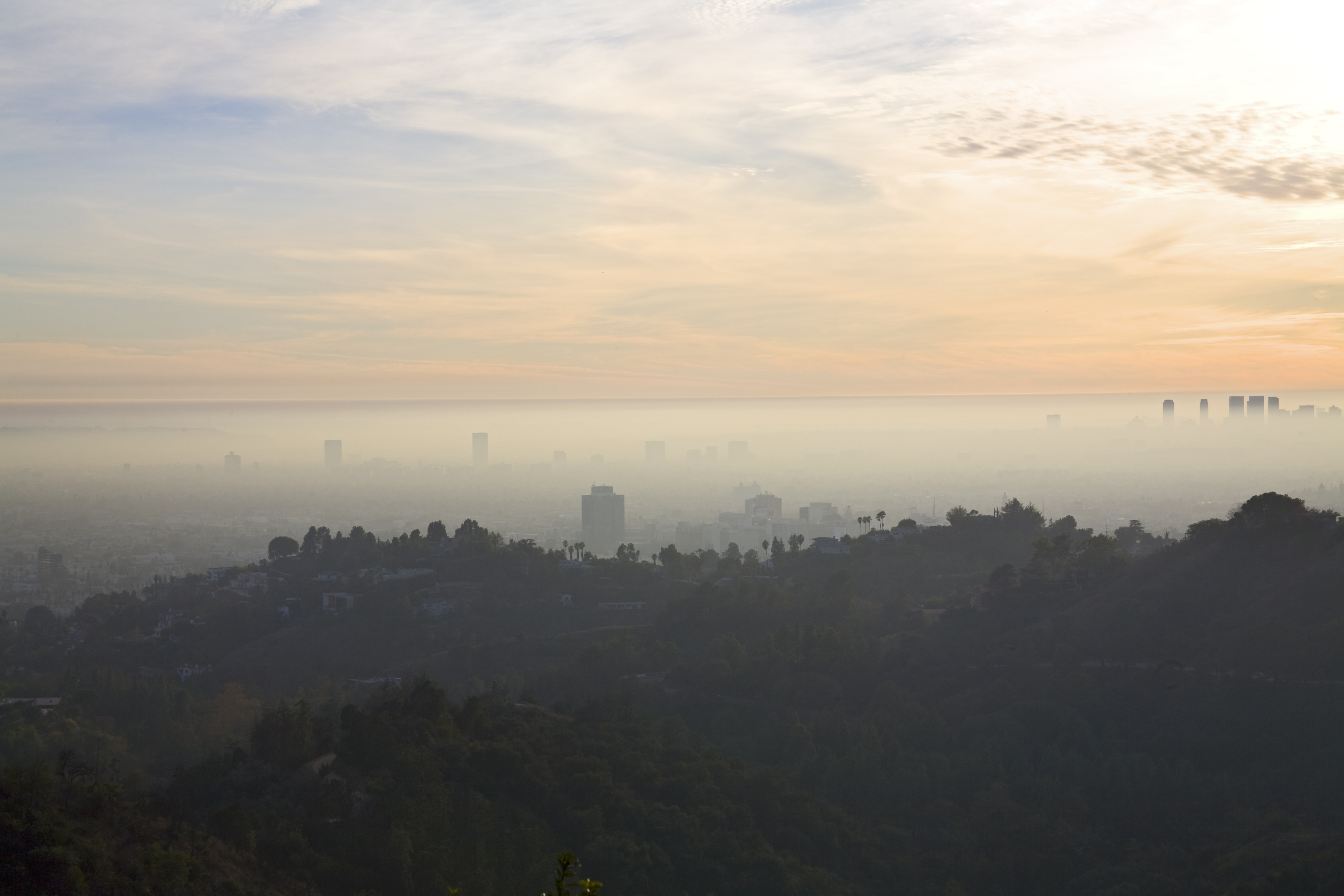 A view of the Hollywood Hills with smog and fog