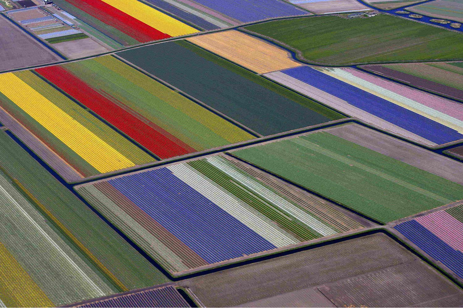 Apr. 9, 2014. Aerial view of flower fields near the Keukenhof park, also known as the Garden of Europe, in Lisse Keukenhof. Employing some 30 gardeners, it is considered to be the world's largest flower garden displaying millions of flowers every year.