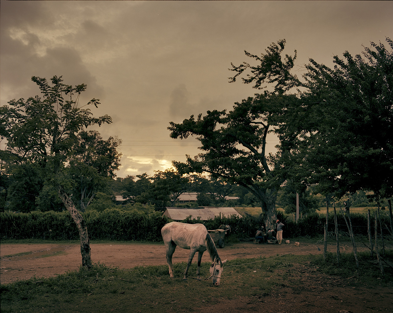 A horse grazing while owner plays dominoes in El Brujo town, outside Santiago de Cuba city.