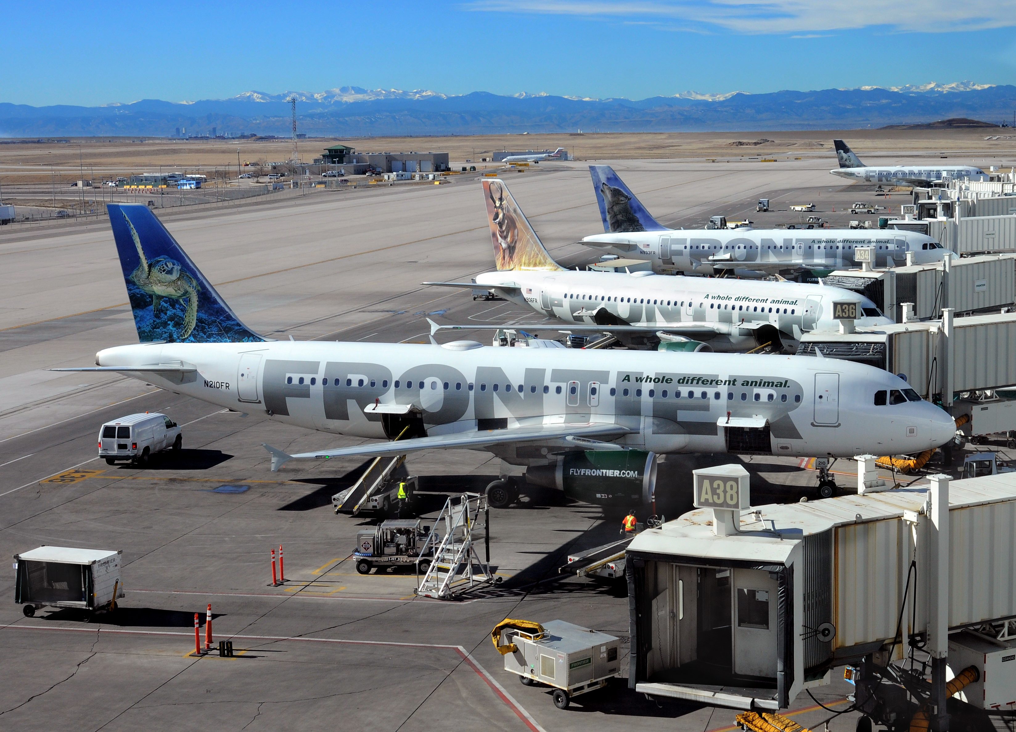 Frontier Airlines planes are loaded and serviced at the gates at Denver International Airport in Denver, Colorado.