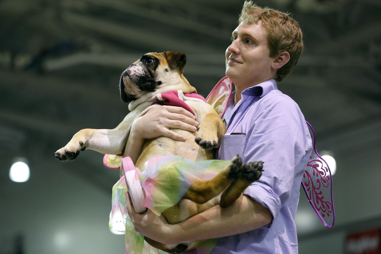 John Jacobson of Pleasant Hill, Iowa, carries Baby aka the  Congeniality  award winner.