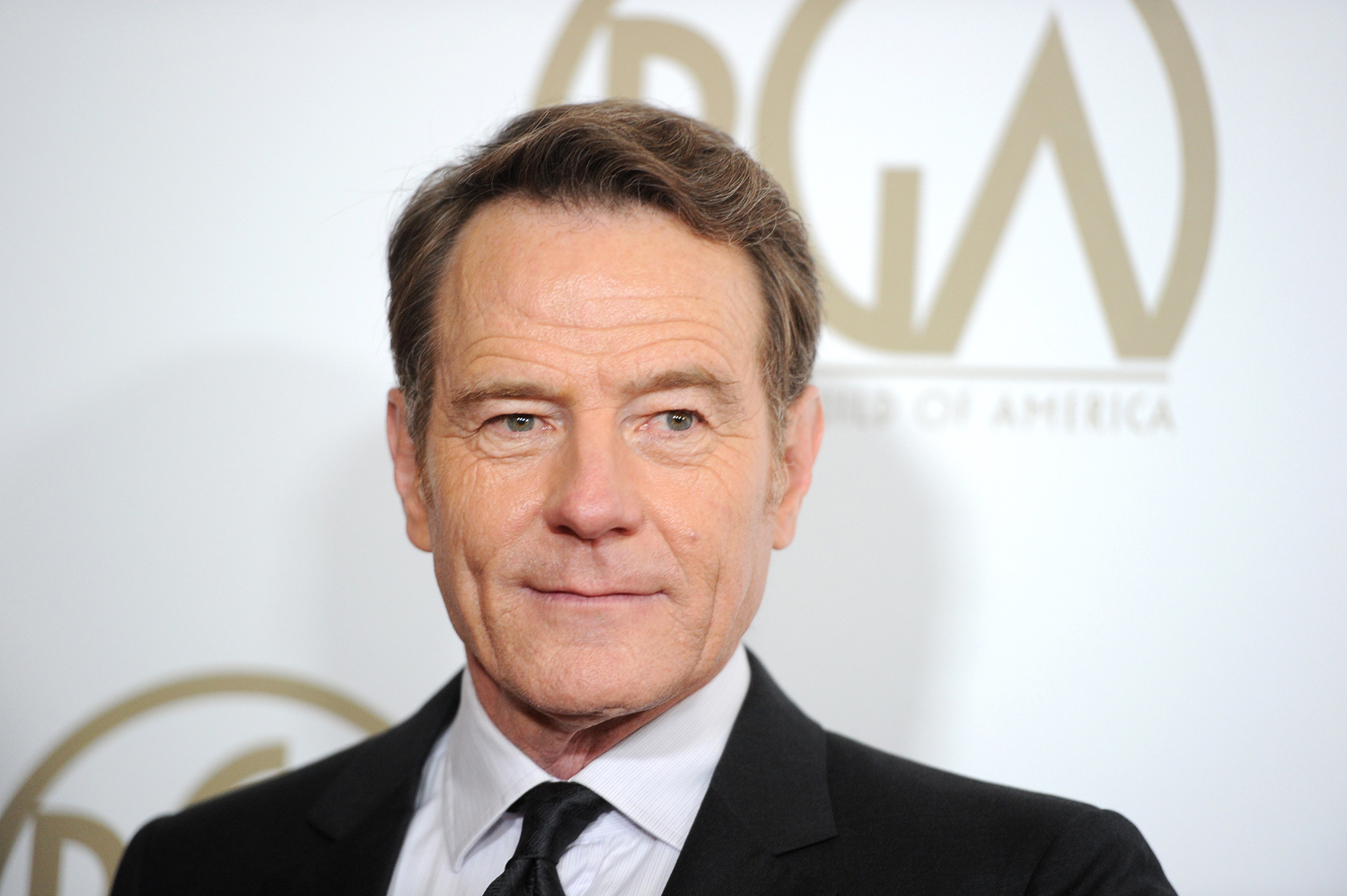 Bryan Cranston attends the 25th annual Producers Guild of America Awards, California, January 19, 2014 at the Beverly Hilton Hotel in Beverly Hills, California.