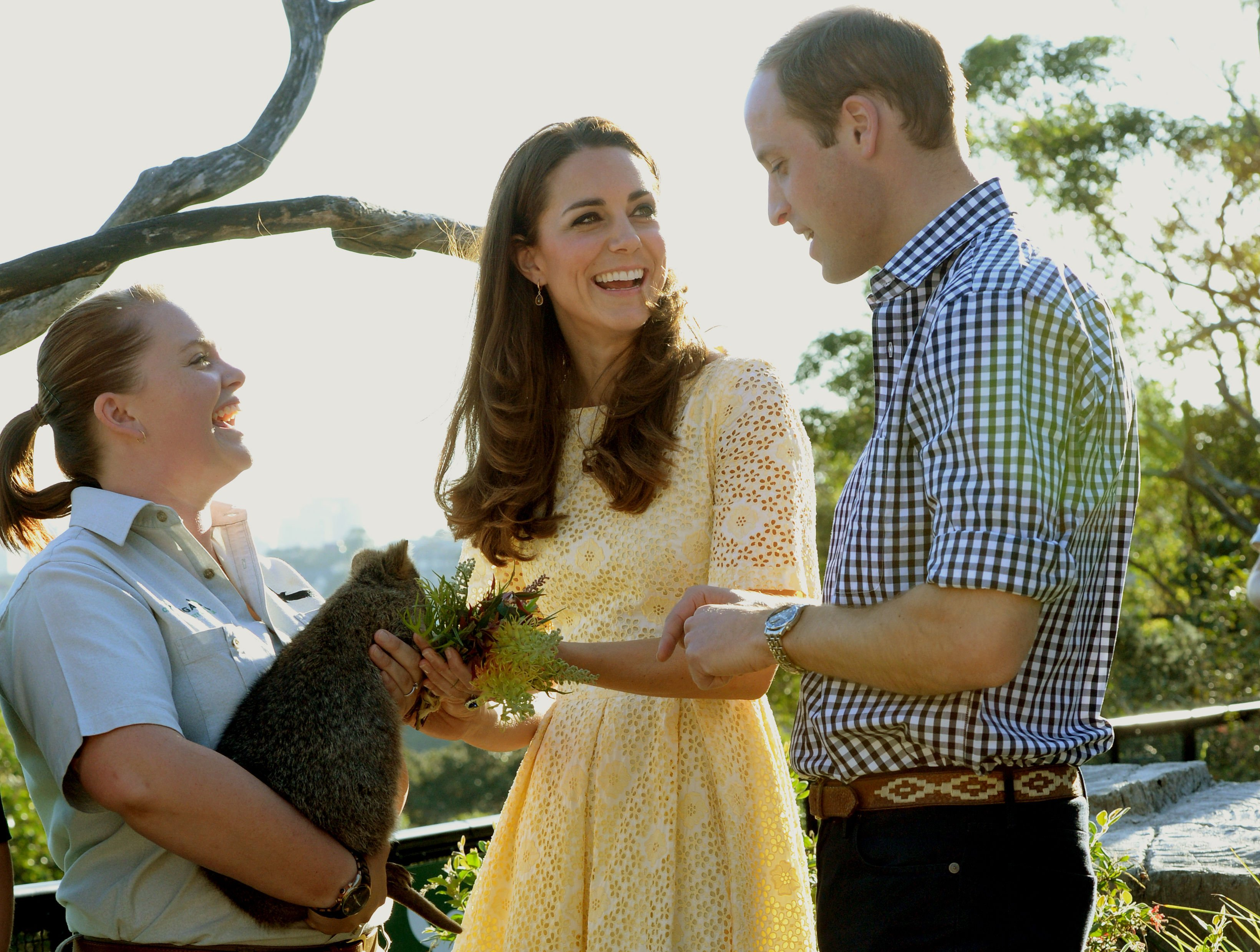 <strong>Lovely in Lace</strong>From left: Catherine, Duchess of Cambridge and Prince William feed a Quokka during a visit to Taronga zoo Sydney on April 18, 2014.