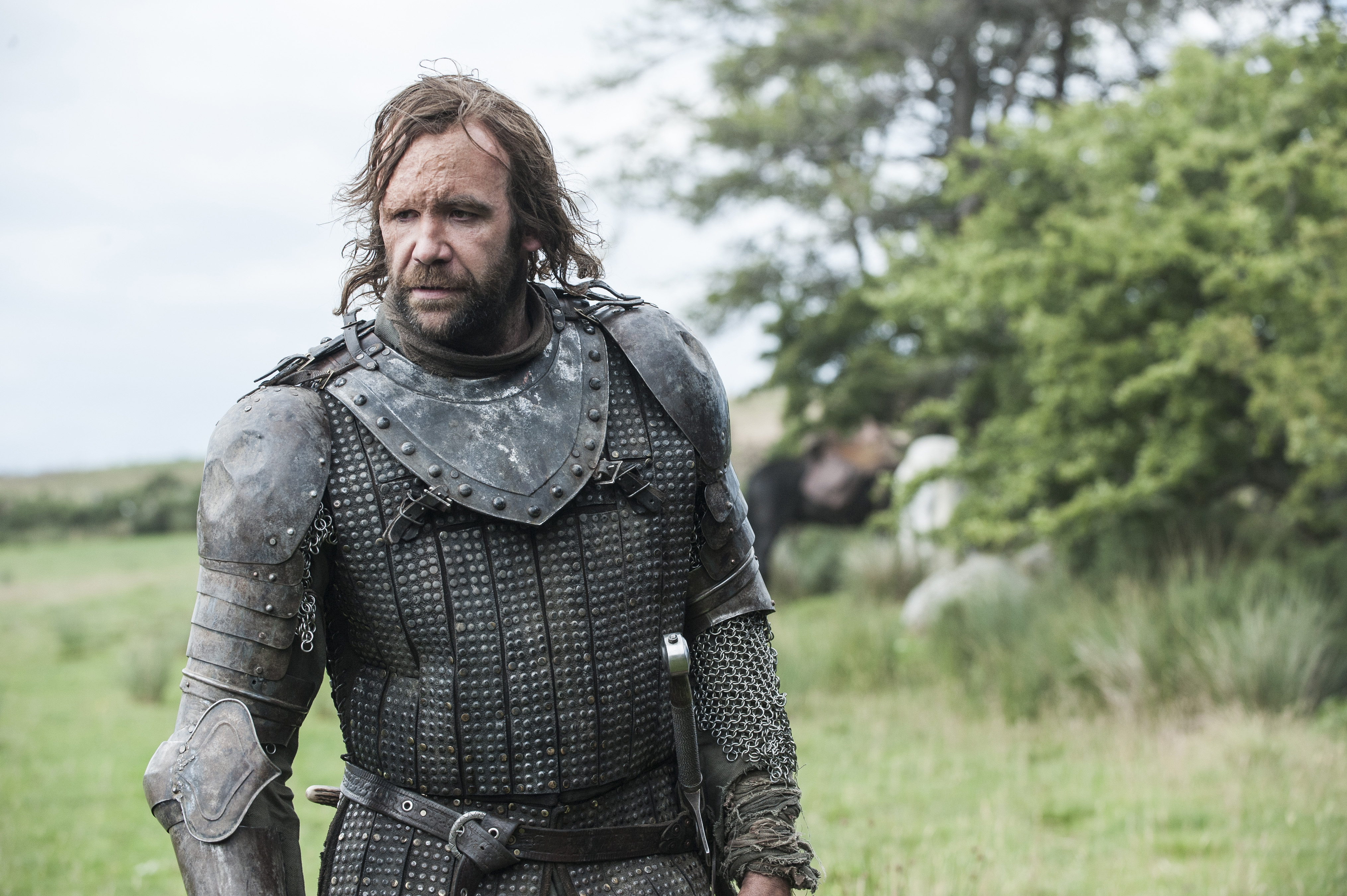 Rory McCann as Sandor  The Hound  Clegane.