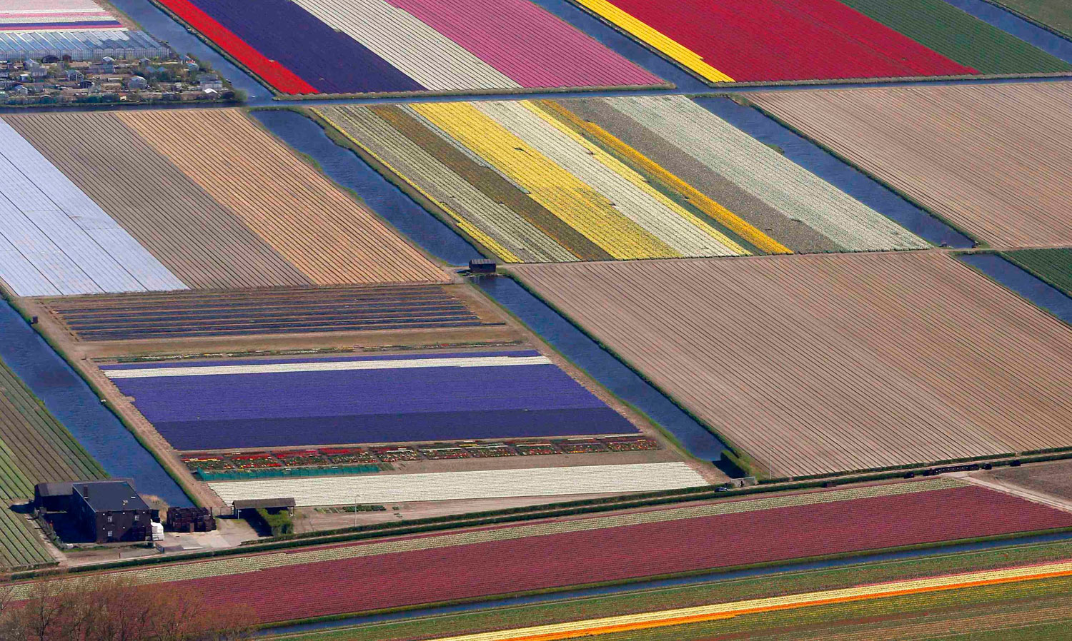 An aerial view of flower fields near the Keukenhof park, in Lisse, Netherlands, on April 9, 2014.