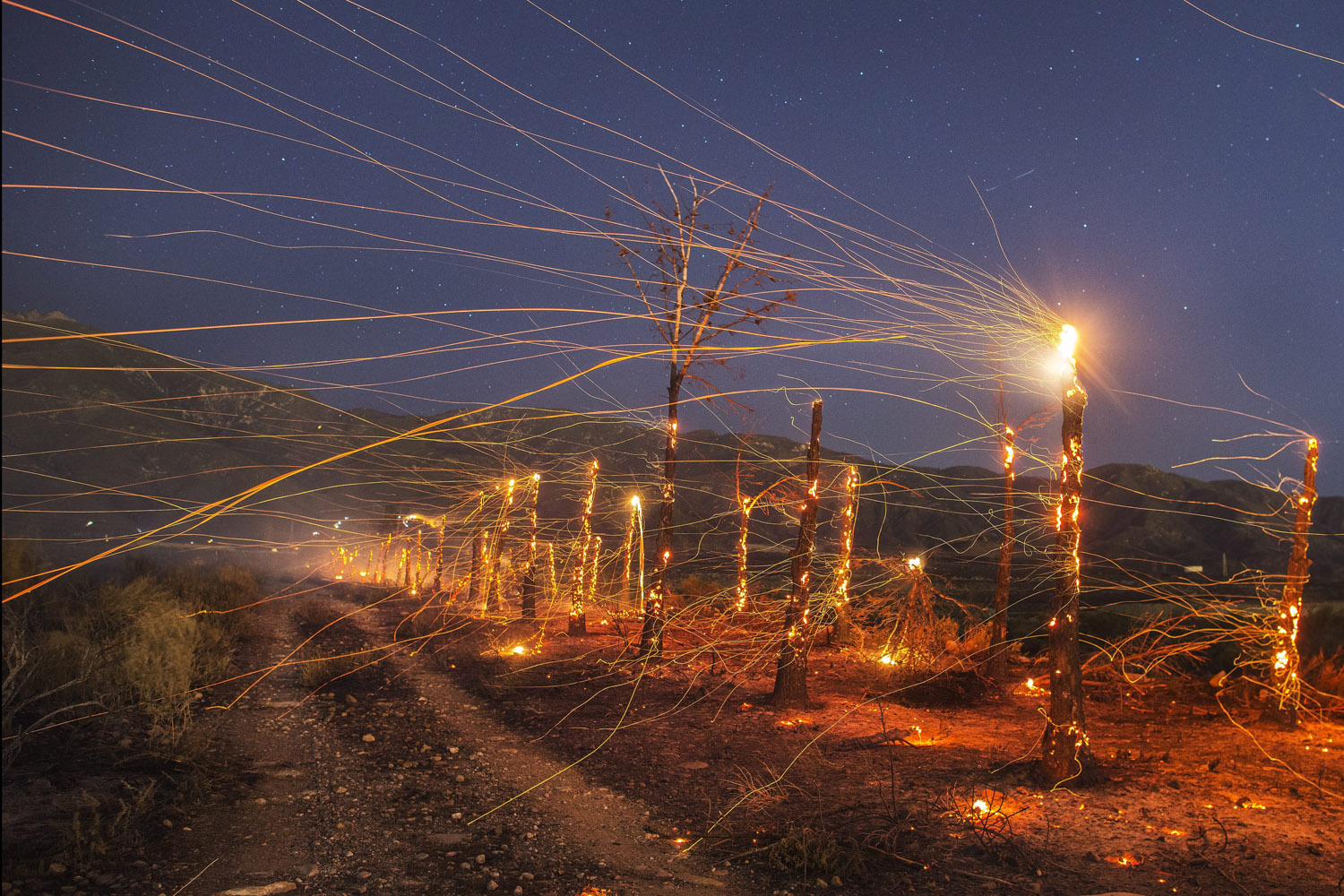 Apr. 29, 2014. A long exposure image of embers flying off burnt out  trees following the wind driven wildfire ranging in the mountain area near Rancho Cucamonga, Southern California.
