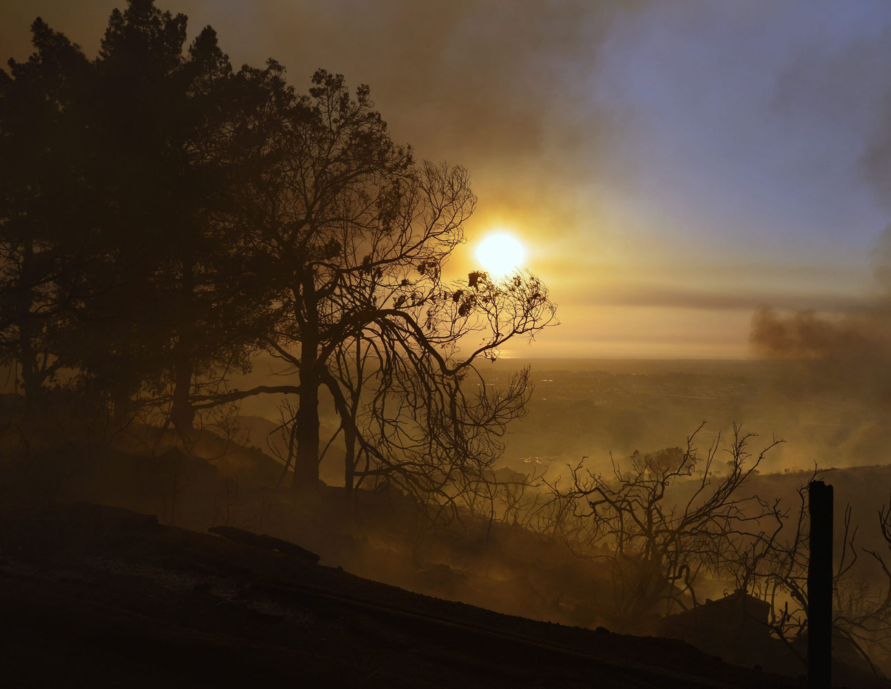 May 14, 2014. Smoldering trees obscure the sunset atop a hill in San Marcos, California.
