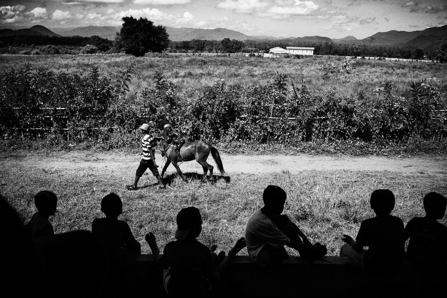 May 19, 2013. A crew lead a horse from rhe track following a race.