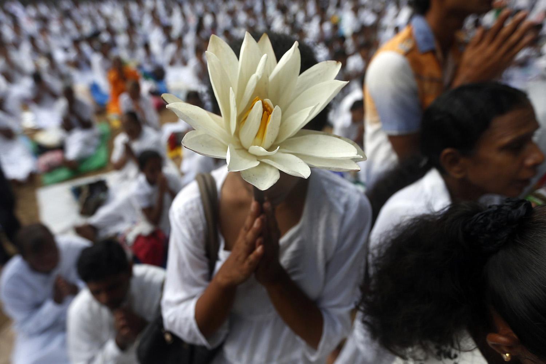 A Buddhist devotee worships at Kelaniya temple in Colombo on Vesak Day on May 14, 2014.