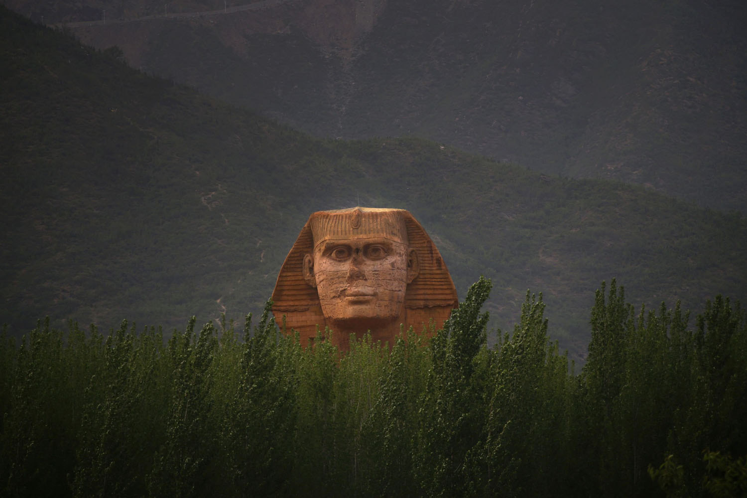 The head of a full-scale replica of the Sphinx, which is part of an unfinished theme park, behind trees on the outskirts of Shijiazhuang, Hebei province, China, on May 15, 2014.