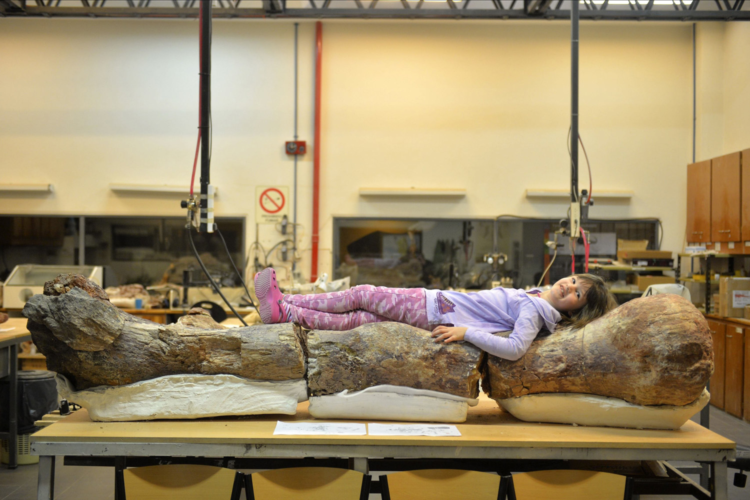 A young girl named Marlene lies over the original fossilized femur of a dinosaur displayed on exhibition at the Egidio Feruglio Museum in the Argentina's Patagonian city of Trelew on May 18, 2014.