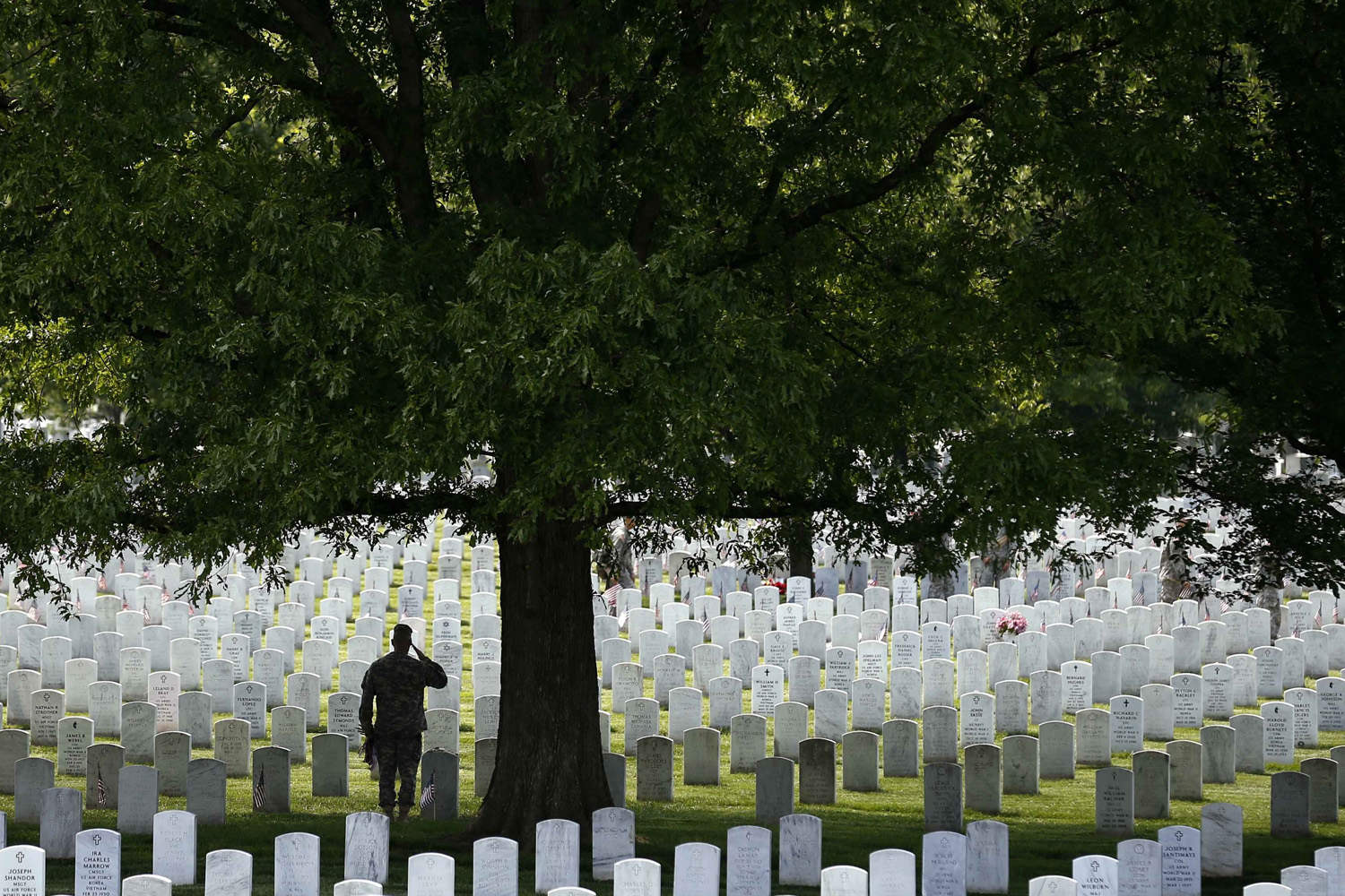 May 22, 2014. A member of the Third U.S. Infantry Regiment (The Old Guard) salutes in front of a grave during a  Flags-In  ceremony at Arlington National Cemetery in Washington.