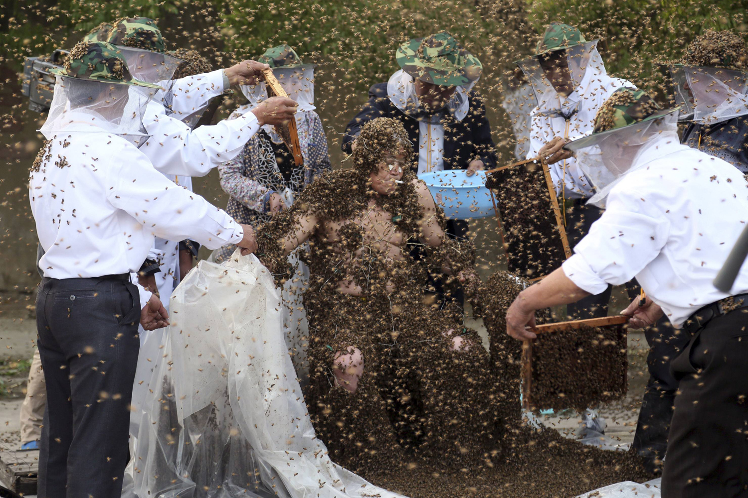May 27, 2014. Gao Bingguo is covered with bees during an attempt to break the Guinness World Record for being covered by the largest number of bees, in Taian, Shandong province.
