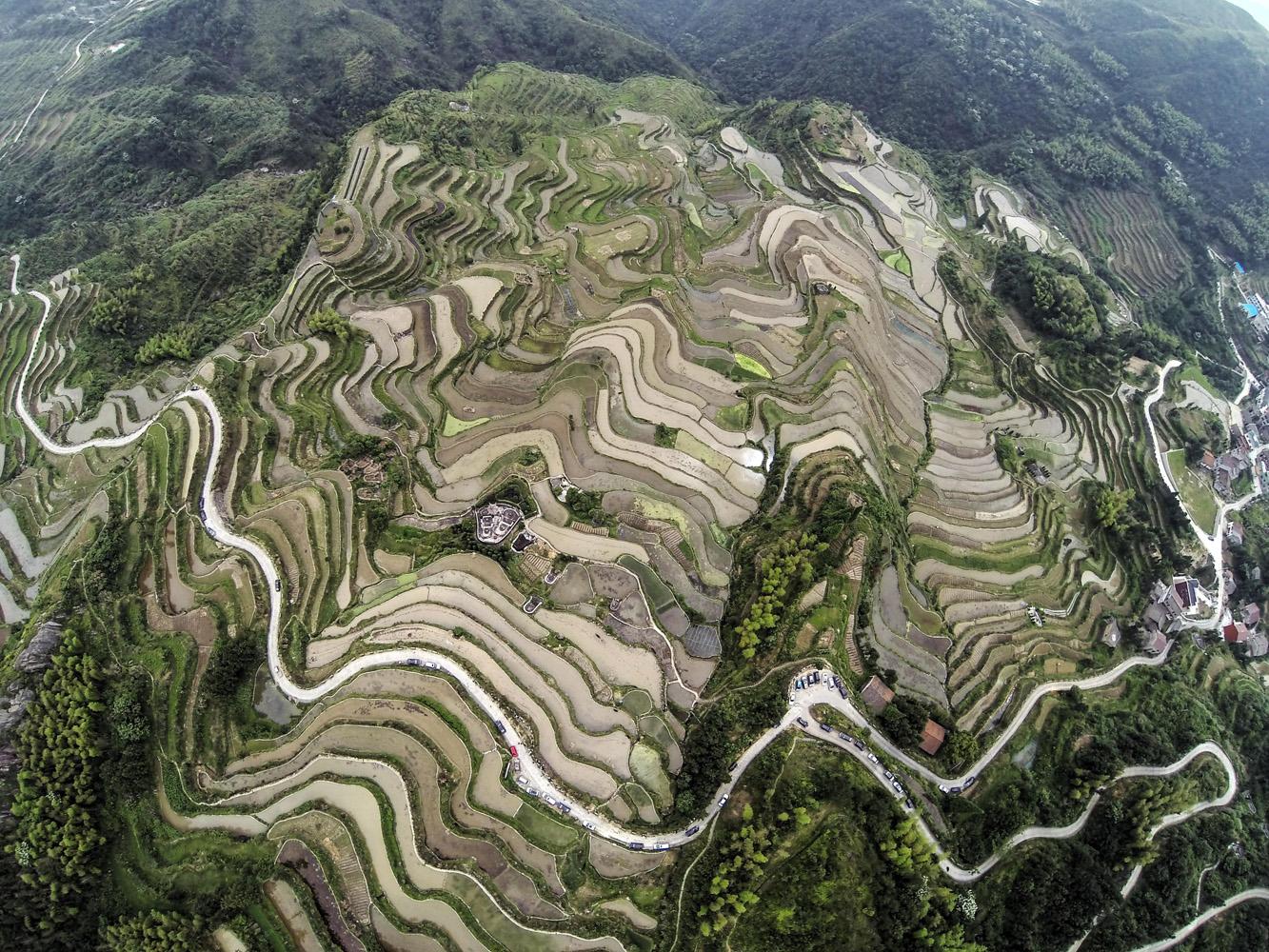 May 29, 2014. Terraced fields in Xiaozhoushan Township of Qingtian County, east China's Zhejiang Province.