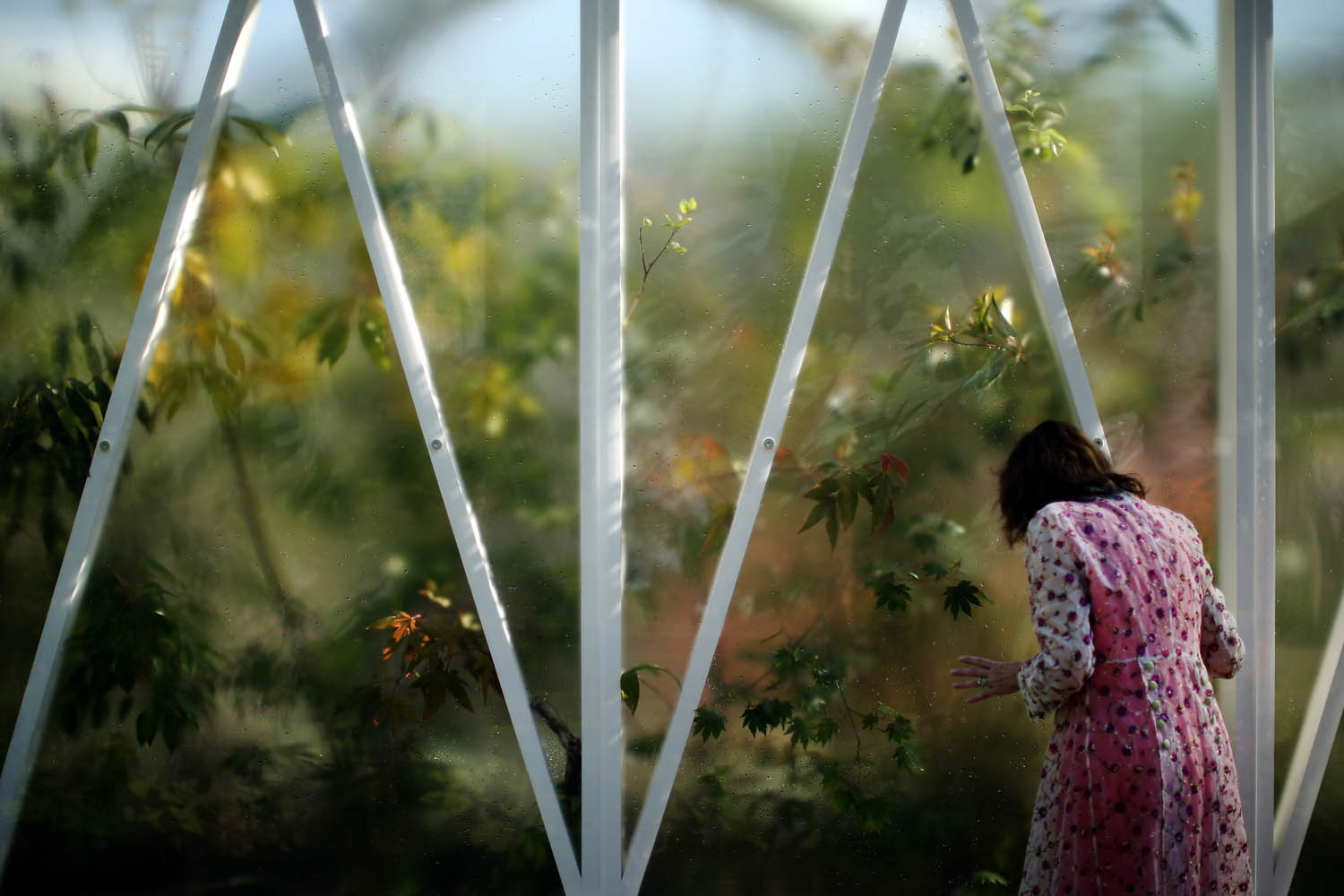 May 19, 2014.  A visitor looks through the glass of a greenhouse on a stand at the 2014 Chelsea Flower Show at Royal Hospital Chelsea in London, England.