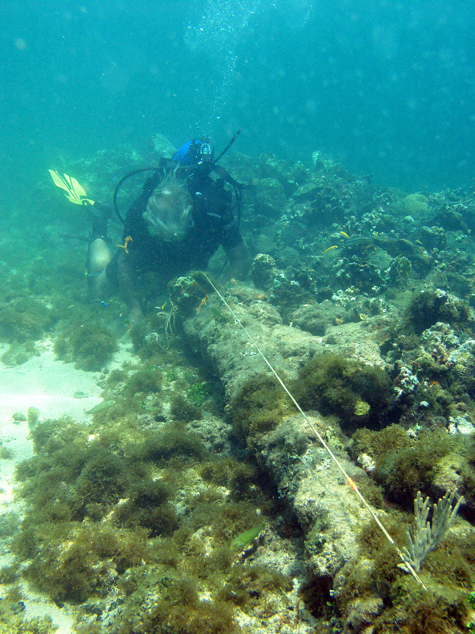 In this May 2003 photo, a diver measures a lombard cannon adjacent to a ballast pile off the north coast of Haiti at a site explorer Barry Clifford says could be the wreckage of Christopher Columbus' flagship vessel, the Santa Maria. He went back to re-explore the ship in 2014 and is confident that it is Columbus' flagship