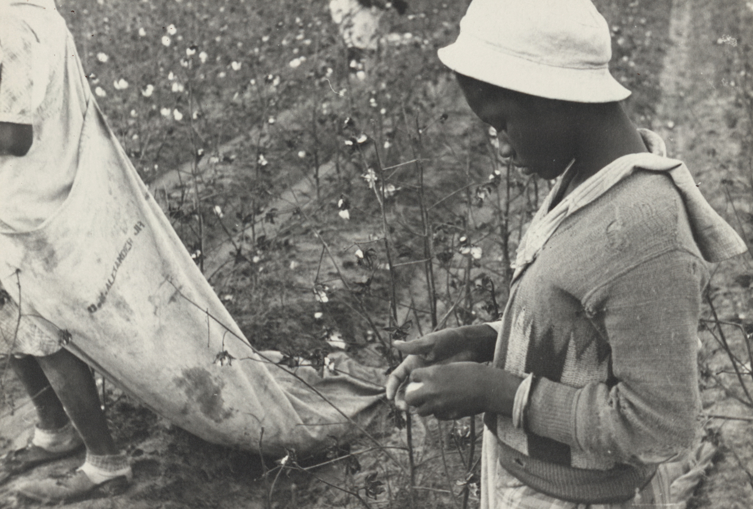 A young African American Young cotton picker in Arkansas during the Depression.