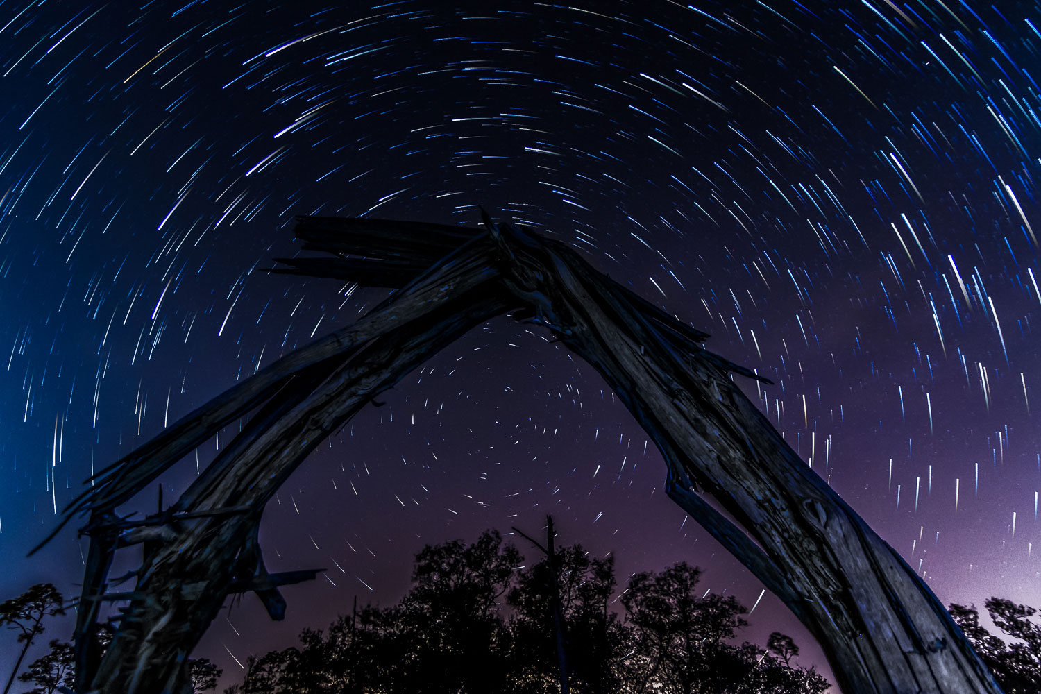 A time lapse showing star trails above Big Lagoon State Park in Pensacola, Fla., on March 30, 2014.