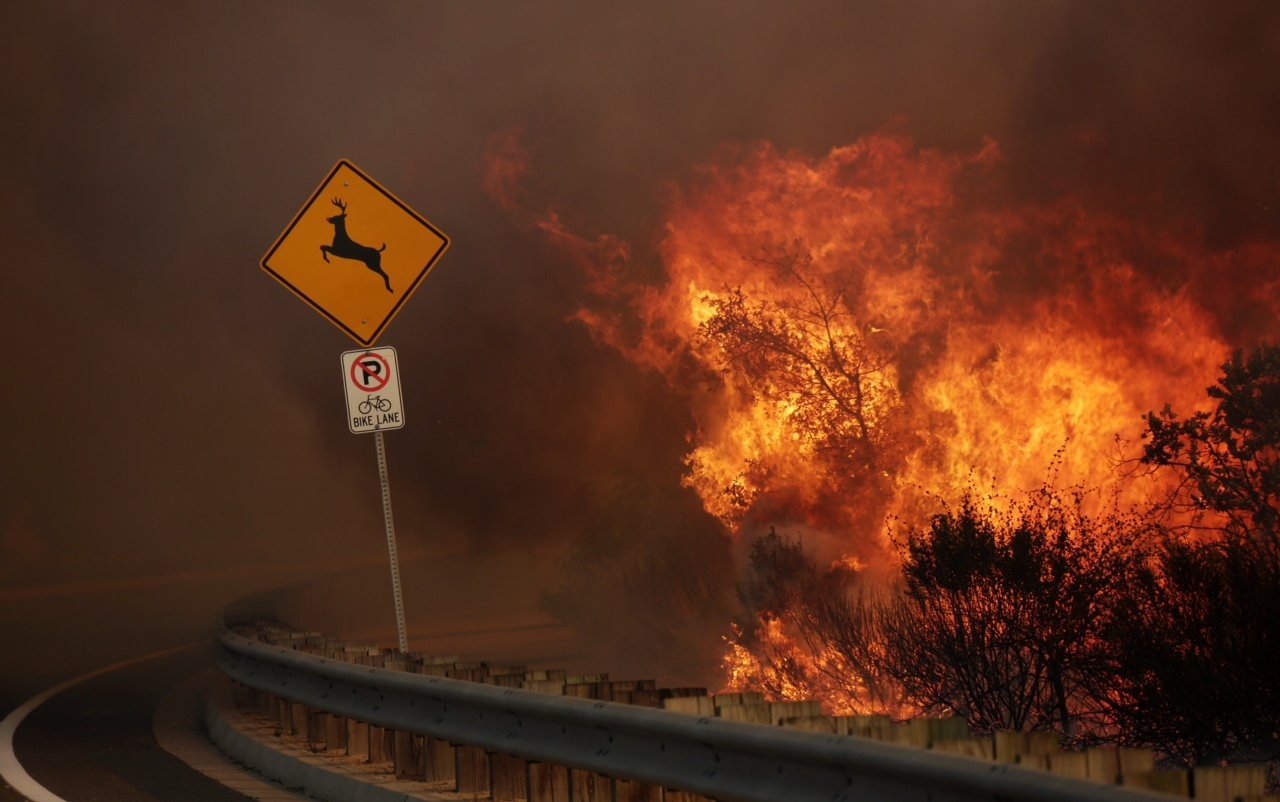 A wildfire burns along the hillside in San Marcos, San Diego on May 14, 2014.