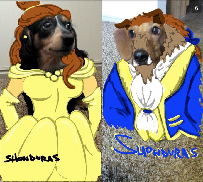 Snapchats by Shonduras