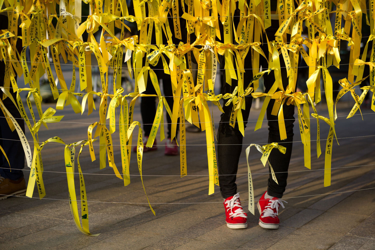 May 1, 2014.                               A woman puts a yellow ribbon with others at a memorial for victims of the 'Sewol' ferry disaster in Seoul, South Korea.