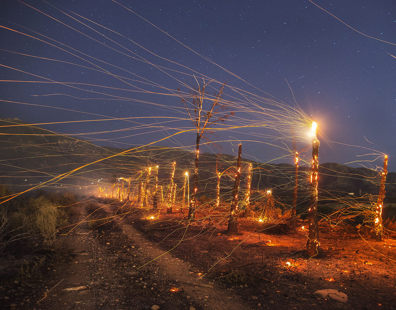 A long exposure image of embers flying off burnt out  trees following the wind driven wildfire ranging in the mountain area near Rancho Cucamonga late on April 30, 2014.