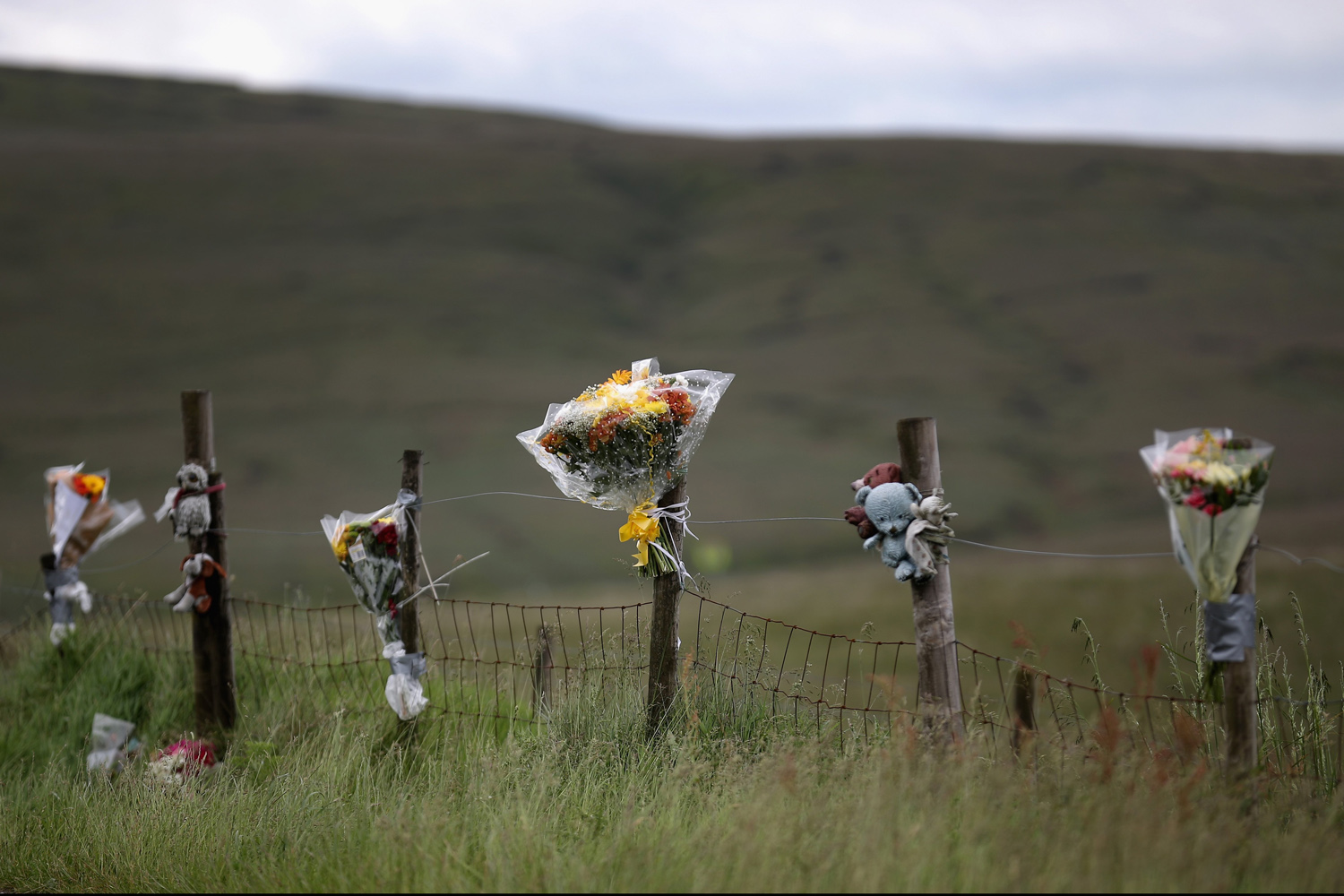 Jun. 16, 2014.  Floral tributes overlook Saddleworth Moor where the body of missing Keith Bennett may be buried in Saddleworth, United Kingdom.